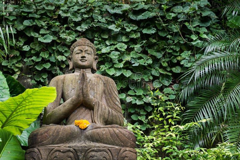 Buddha w Bambusowym forrest zieleń ogródzie zdjęcia stock