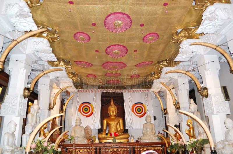 buddha wewnętrzny władyki świątyni ząb obraz stock
