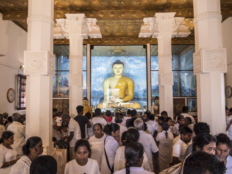 Buddha wizerunek wśrodku Mahabodhi świątyni Anuradhapura, Shri Lanka Dewotki uwielbiają Buddha zdjęcie royalty free