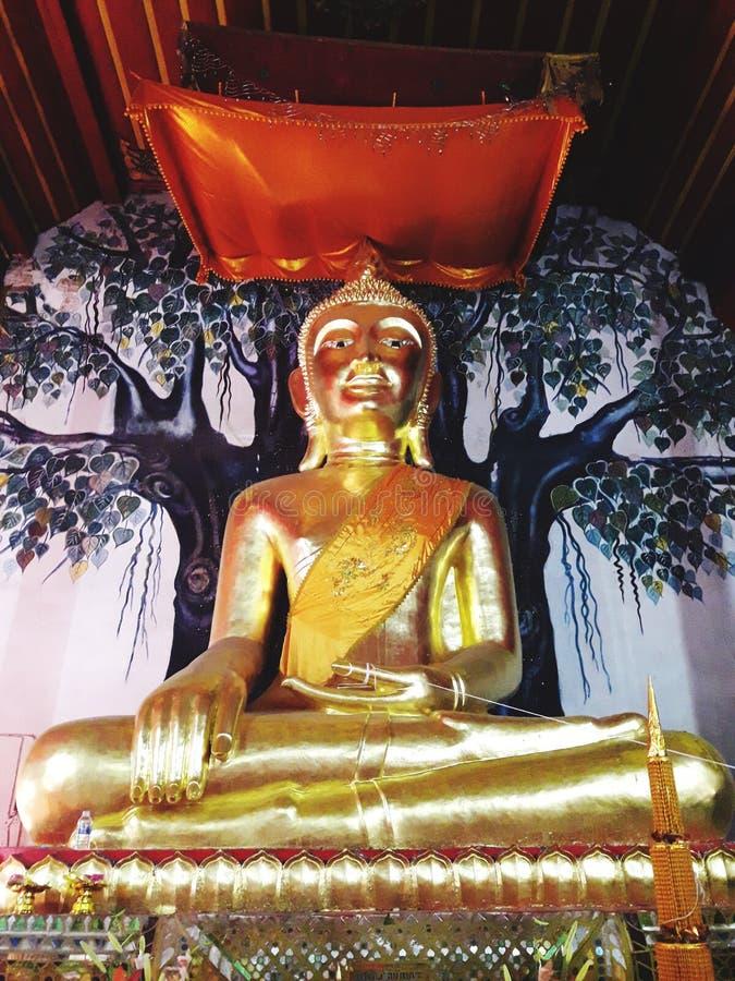 buddha wizerunku dyrektor zdjęcia royalty free