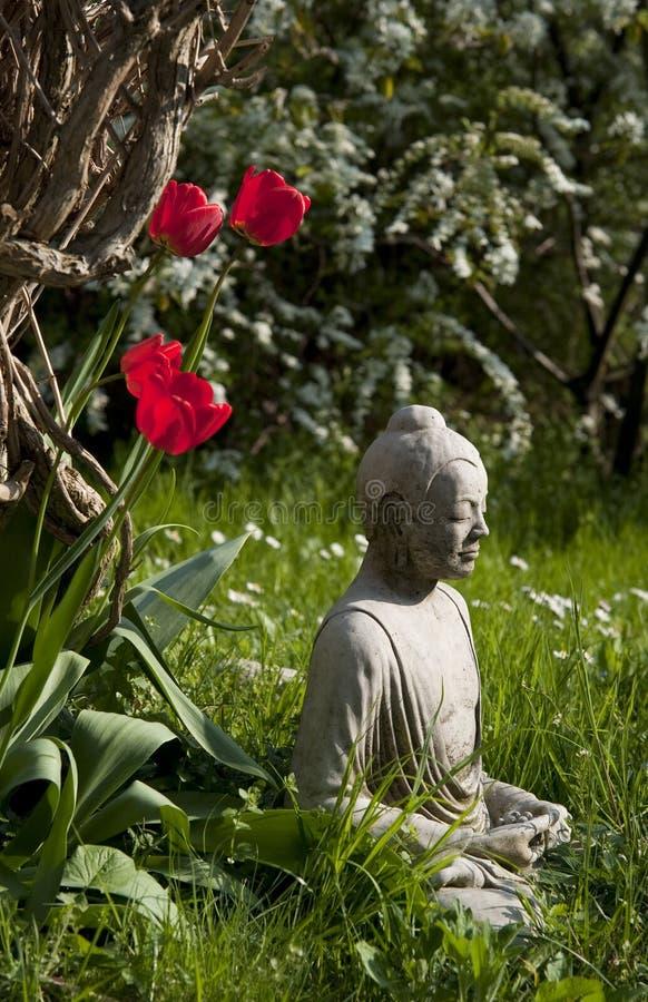 Buddha y tulipanes fotos de archivo