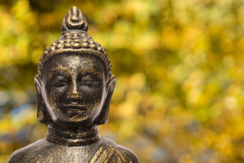 Buddha yellow and orange leafs in fall stock photos