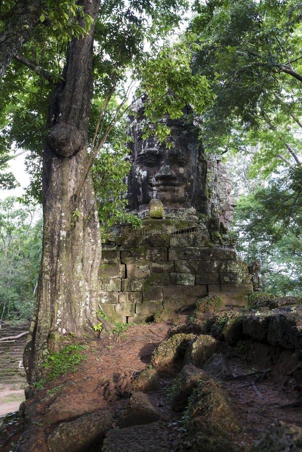 Buddhahuvud i djungeln arkivfoton