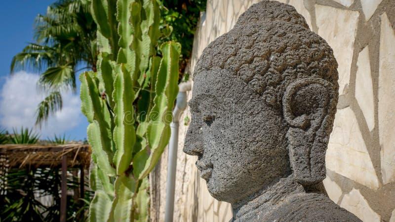 Buddhahuvud i trädgård arkivfoto
