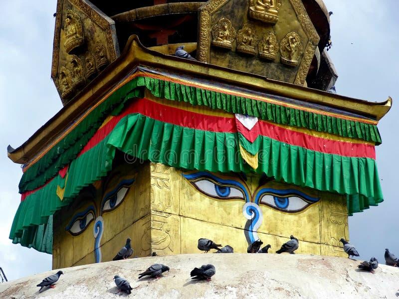 Buddhas眼睛 免版税库存图片