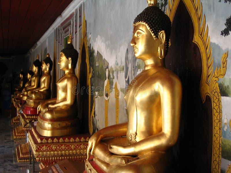Buddhas fotografia stock libera da diritti