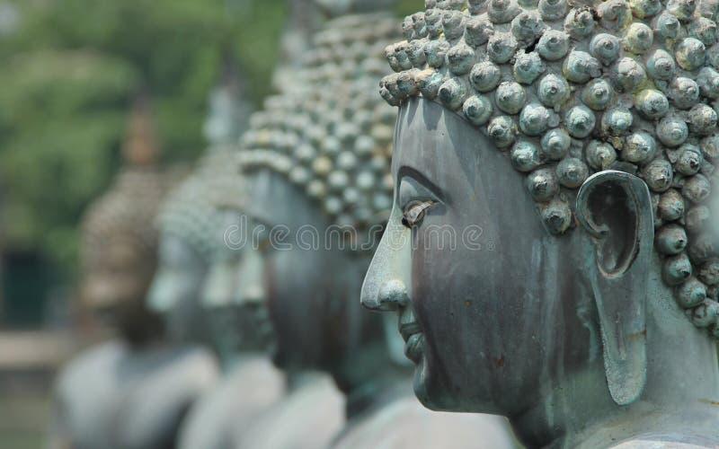 buddhas photos stock