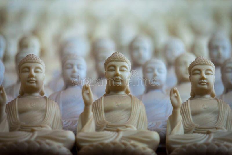 buddhas obraz stock