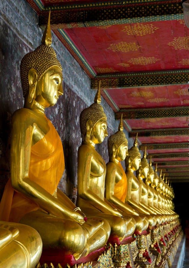 Buddhas dorati nel sutat del wat, Bangkok immagini stock libere da diritti