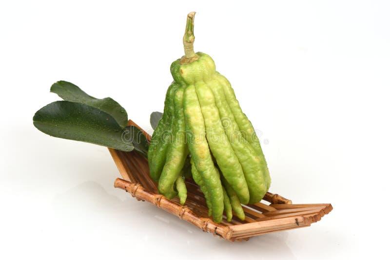 Buddhas Finger, Buddhas Hand, fingrige Zitrone (Zitrusfrucht medica L ) friut stockfotos