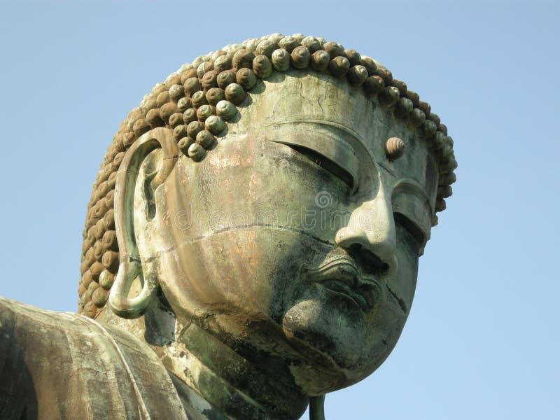 Buddhas Kopf lizenzfreie stockbilder