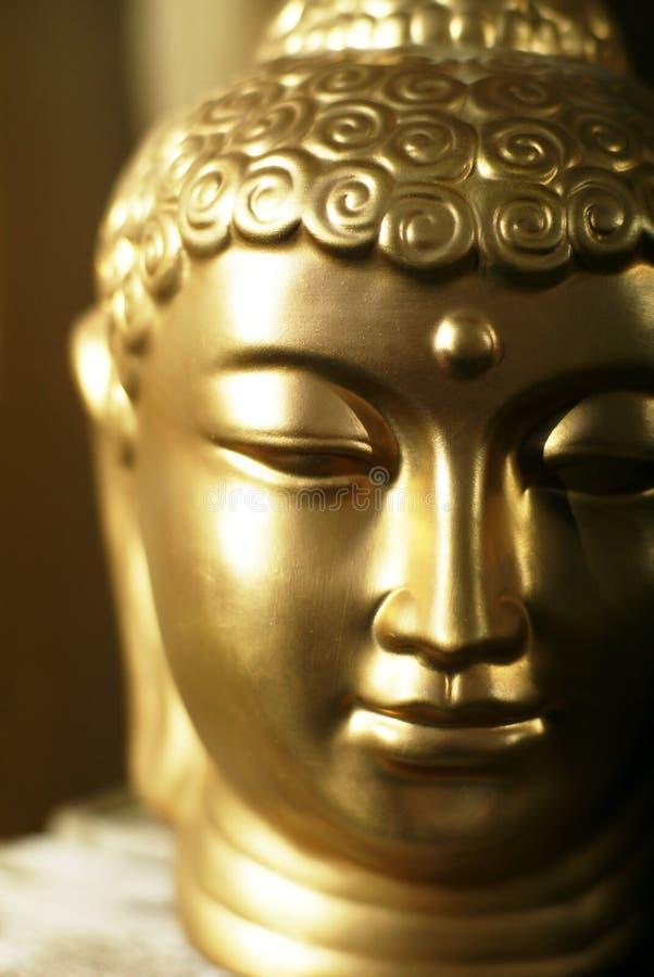 Buddhas Kopf. lizenzfreie stockbilder