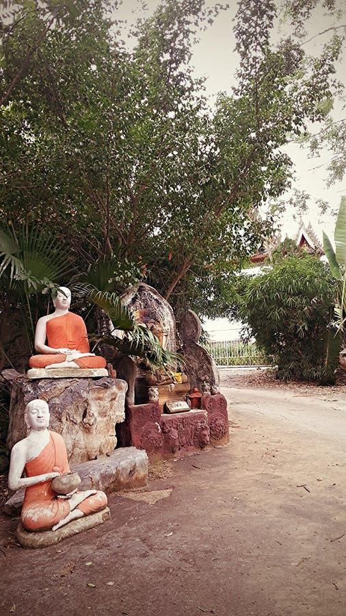 Buddhas Meditating fotografía de archivo