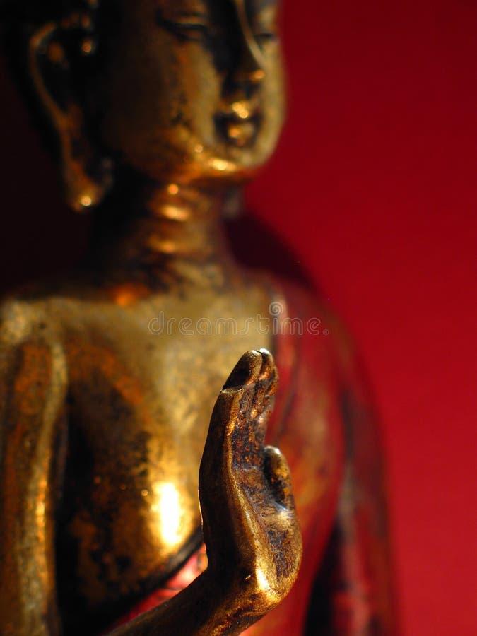Buddhas Palme lizenzfreies stockfoto