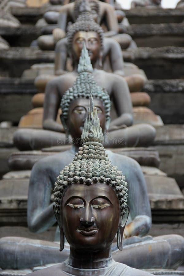 Buddhas stock images