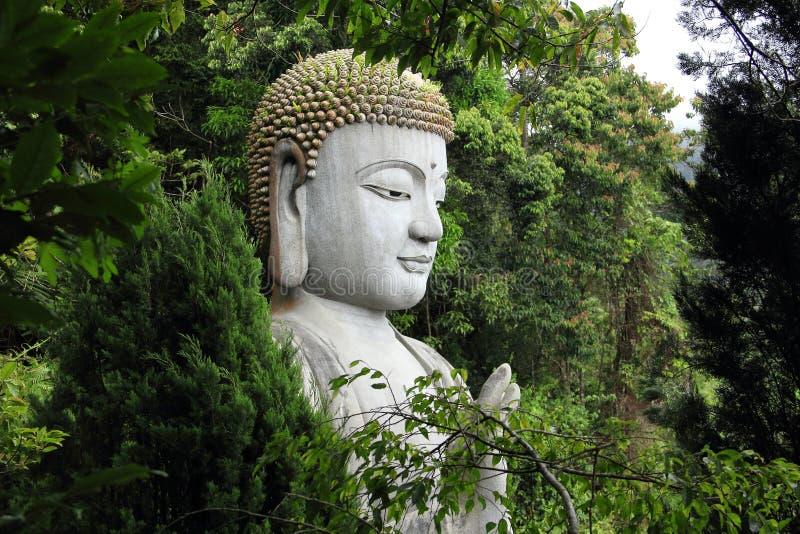 Buddhastaty bak träden Chin Swee Temple Malaysia arkivfoto