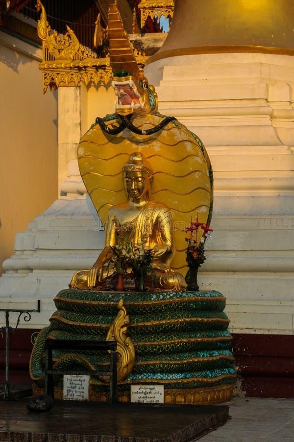 Buddhastaty i pagod royaltyfri fotografi