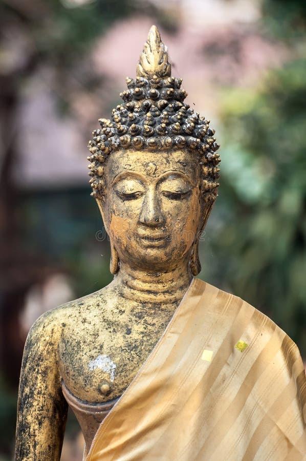 Buddhastaty på Wat Jet Yod, Chiang Mai, Thailand royaltyfri fotografi