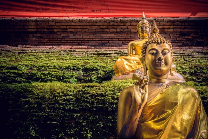 BuddhastatyChiangmai landskap i Thailand royaltyfri bild