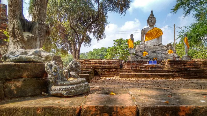 Buddhastatyer i en gammal historisk tempel i Ayutthaya i Thailand royaltyfria foton