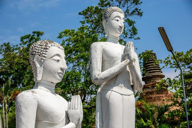 Buddhastatyer i Phra Nakhon si Ayutthaya, på Wat Yai Chai MongkolMongkhon Thailand, en av den berömda historiska gränsmärket i t royaltyfri bild