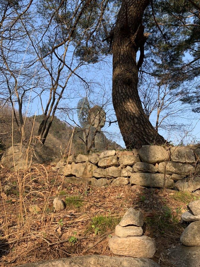 Buddhastatyn omges av stenar royaltyfri foto