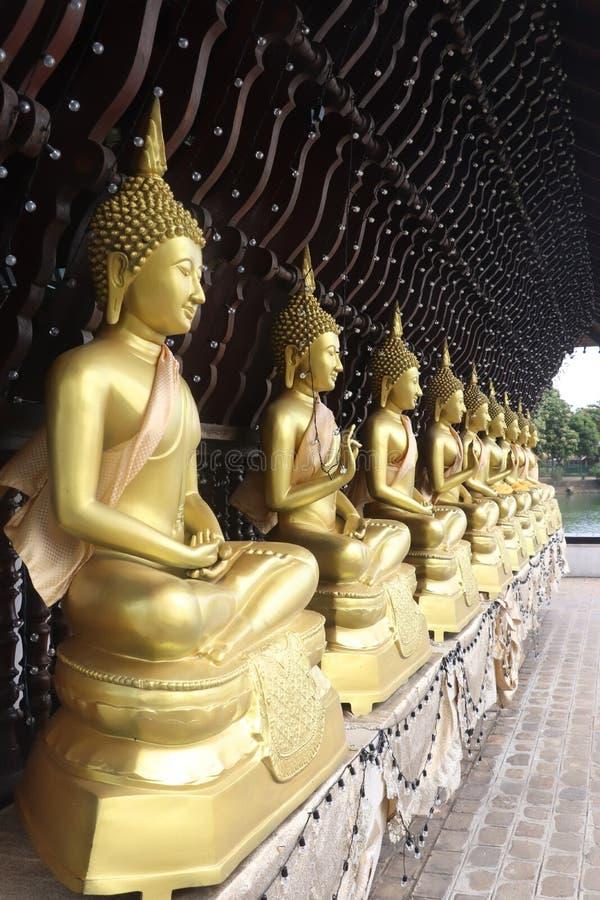 Buddhatemplet i Sri Lanka arkivbild