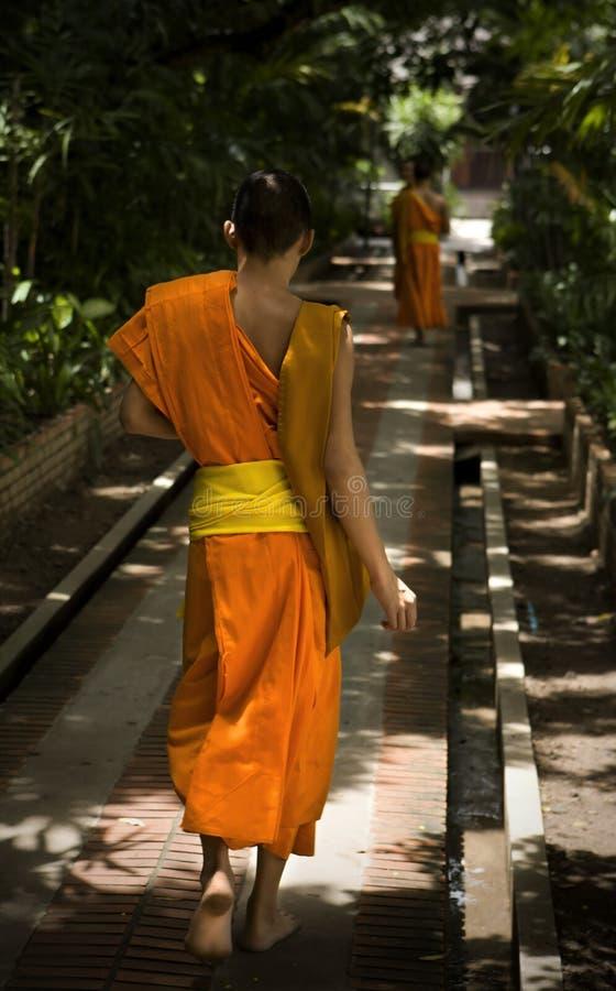 buddhism zdjęcie royalty free