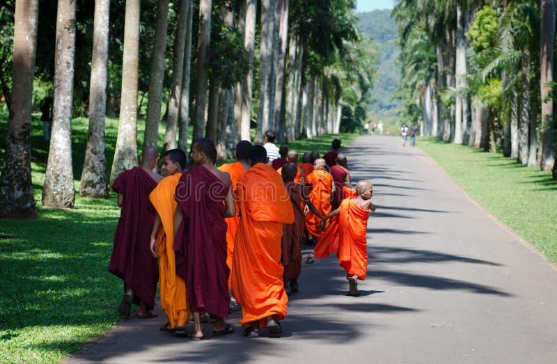 buddhism dzieci michaelita park fotografia royalty free