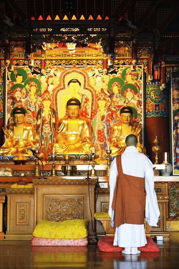 Buddhism monk are praying in front of Buddha image at Haedong yo stock photo