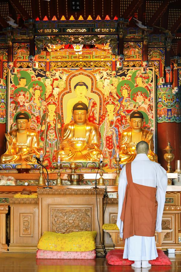 Buddhism monk are praying in front of Buddha image at Haedong yo stock photography