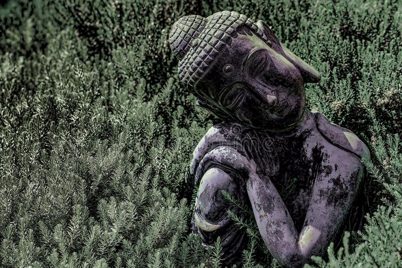 Buddhism and nature. High-contrast image of traditional Buddha s. Buddhism and nature. High-contrast image of traditional an ornamental Buddha statue amongst royalty free stock image