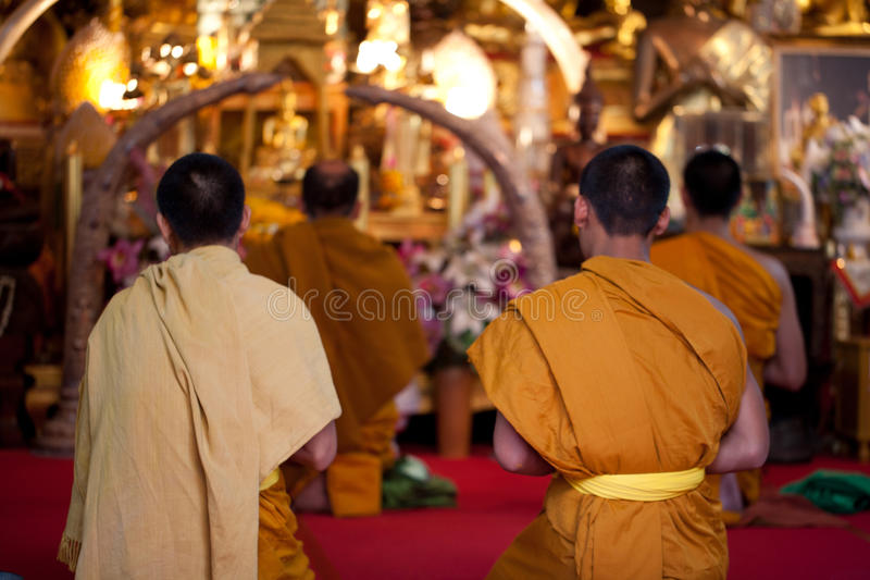 Buddhist monks praying on eve stock images