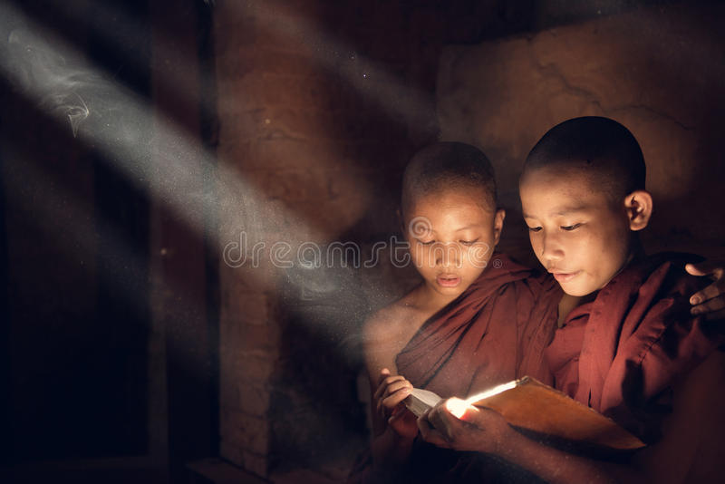 Buddhist novice monks reading in monastery royalty free stock images