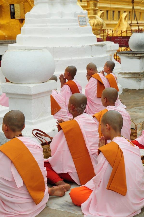 Buddhist nuns Myanmar. Buddhist nuns chanting and praying at Shwezigon Temple in Bagan, Myanmar, Burma stock images