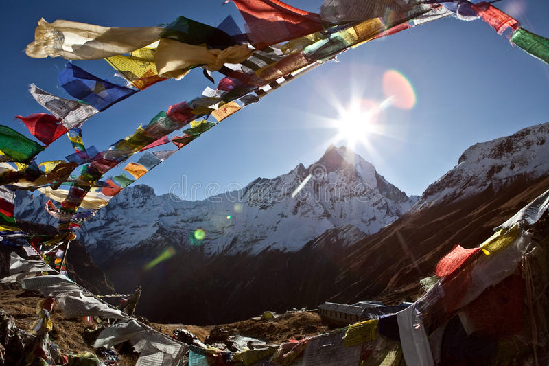 Buddhist prayer flags. Above the Mt. Annapurna Base Camp, in Nepal. The mountain in the background is the Machhapuchhare, 6993 mt. high and It is revered by the stock photo