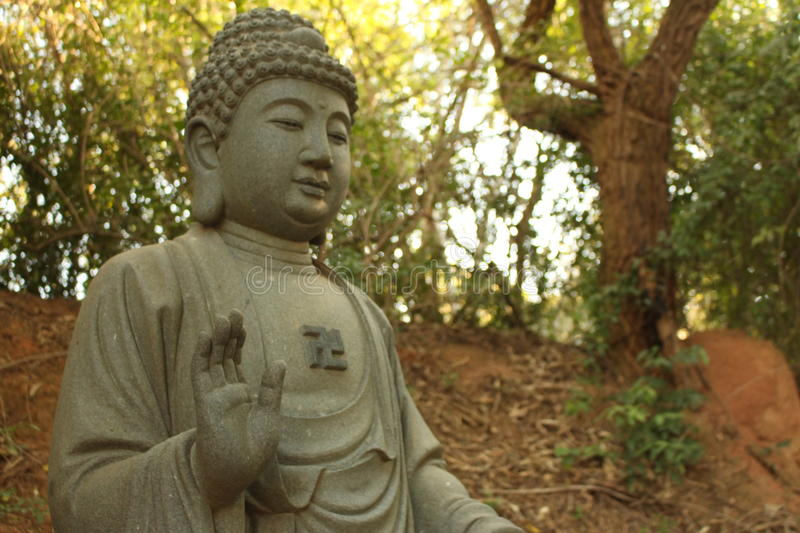 Buddhist statue. In a florest royalty free stock images