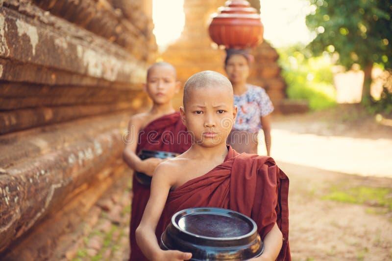Buddhistische Anfängermönche, die Nahrungsmittel sammeln stockbild