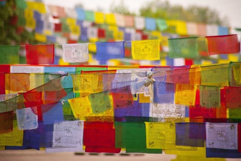 Buddhistische betende Flaggen stockfoto
