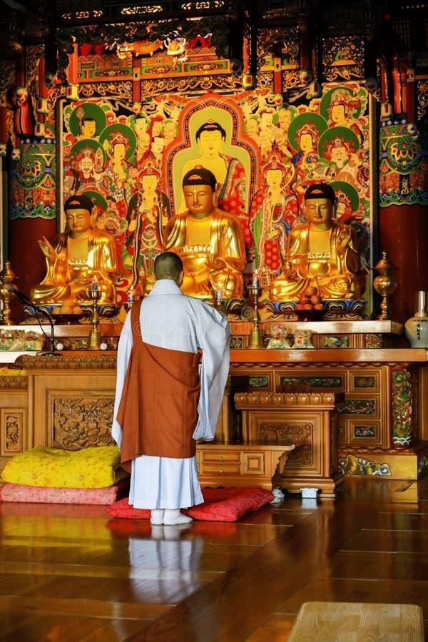 Buddismmunken ber framme av Buddhabild på den Haedong yoen royaltyfri bild