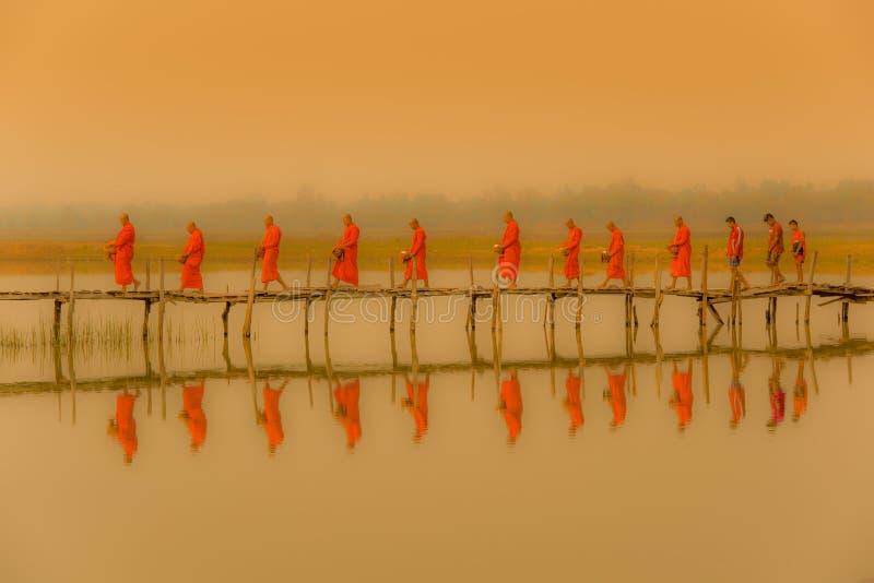 Buddist munkar som marscherar för att söka allmosa i morgon med fofoggy envi royaltyfri foto