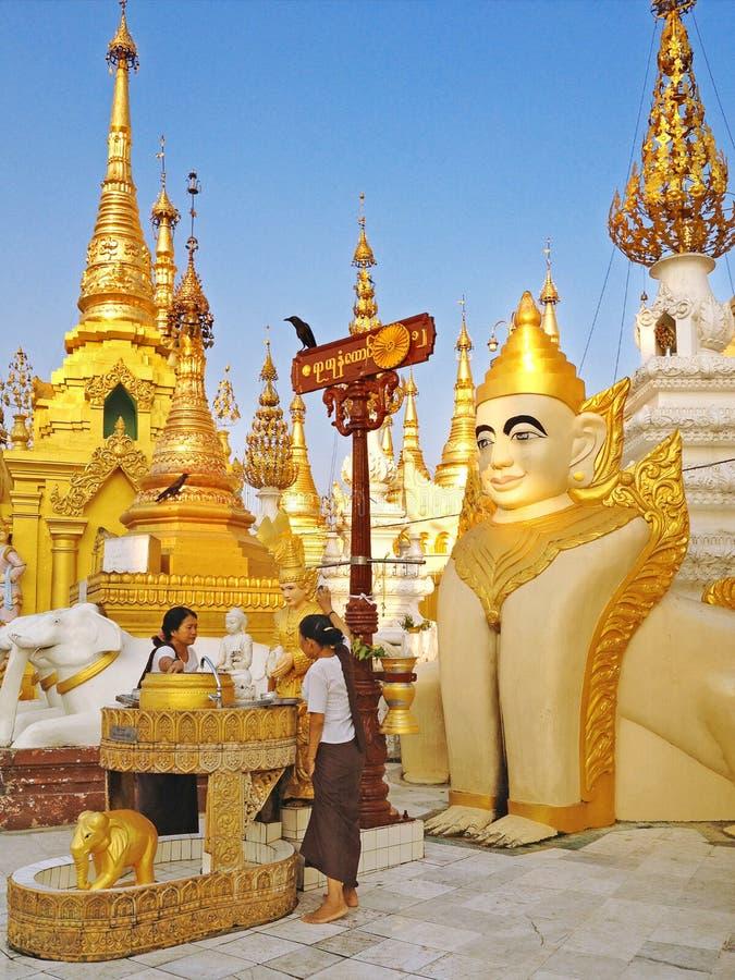 Buddistisk badningBuddhastaty för välsignelser på den Shwedagon pagoden arkivbild