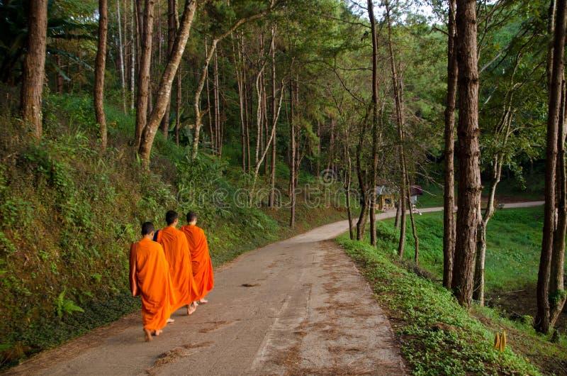 buddistiska monks tre royaltyfri fotografi