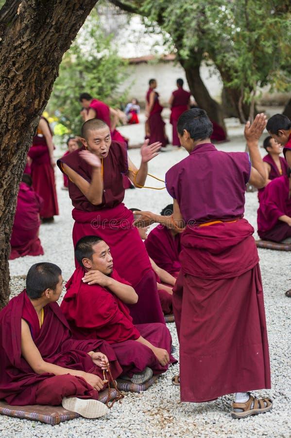Buddistiska munkars applåderar den debattera Œa för ¼ för övningsï munken, drastiskt debattera, Tibet royaltyfri foto