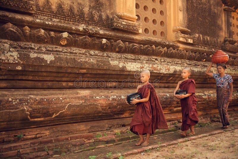 Buddistiska novismunkar som går allmosa i Bagan royaltyfria foton