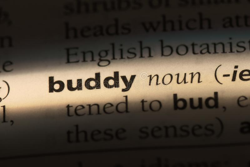 Buddy. Word in a dictionary.  concept stock photos