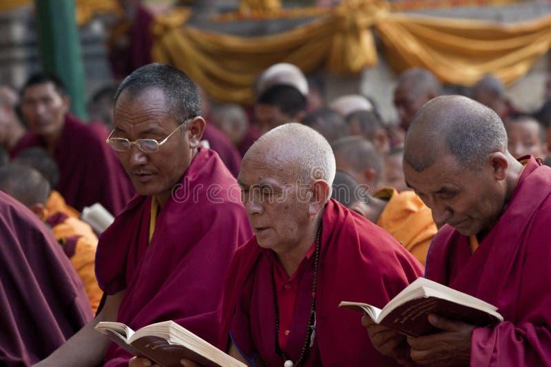 buddyjski ja target392_1_ michaelita zdjęcia stock