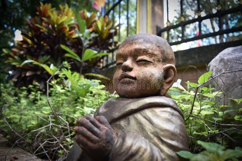 Buddyjski nowicjusz obraz stock