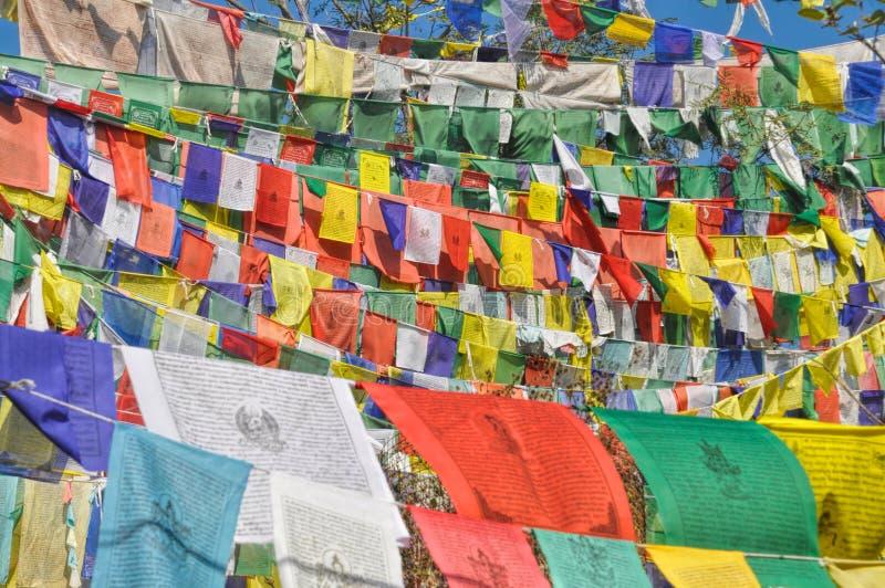 Buddyjskie modlitw flaga w Dharamshala, India zdjęcia royalty free