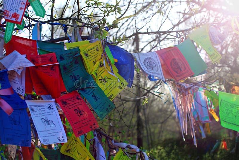 Buddyzm flaga modlitewny lungta z om Mani padme brzęczenia mantrą zdjęcie royalty free